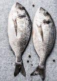 Fish delicacy Stock Photo