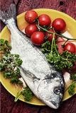Fish delicacy Royalty Free Stock Photography
