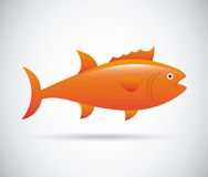 Fish design. Fish grafic design , vector illustration Stock Images