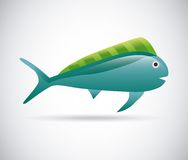 Fish design. Fish grafic design , vector illustration Royalty Free Stock Image