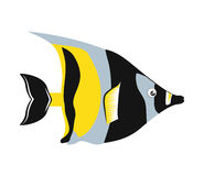 Fish design over  background. Sea life icon, vector grap. Sea life represented by cartoon fish over  and flat illustration Royalty Free Stock Photography