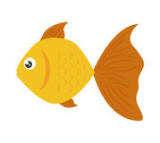 Fish design over  background. Sea life icon, vector grap. Sea life represented by cartoon fish over  and flat illustration Stock Photos