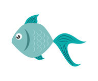 Fish design over  background. Sea life icon, vector grap. Sea life represented by cartoon fish over  and flat illustration Stock Photo