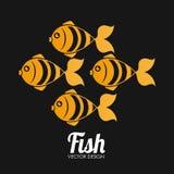 Fish design. Over black background, vector illustration Stock Images