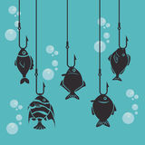 Fish design. Over blue background, vector illustration Royalty Free Stock Photography