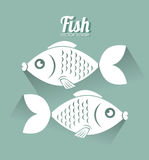Fish design. Over green background, vector illustration Royalty Free Stock Photography