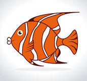 Fish design. Over white background, vector illustration Stock Photos
