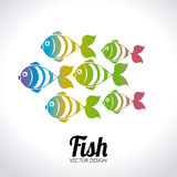 Fish design. Over white background, vector illustration Stock Photography