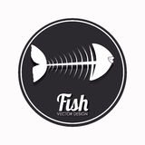 Fish design. Over white background, vector illustration Royalty Free Stock Photography