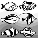 Fish design vector. Abstract fish design elements illustration Royalty Free Stock Image