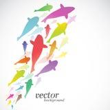 Fish design on white background. Vector Illustration Stock Photo