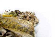 Fish dinner. A delicious zander with a side of mushrooms royalty free stock images