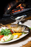 Fish dinner. A fish dinner on a plate with vegetables in front of a fire Royalty Free Stock Photography