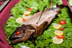 Fish dinner plate Stock Photos