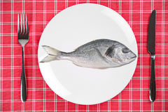 Fish dish Royalty Free Stock Photo