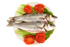 Fish dish 2. Image of two fish placed on a white plate and some vegetables Royalty Free Stock Photography