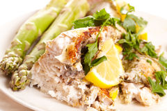 Fish dish. Stock Photography