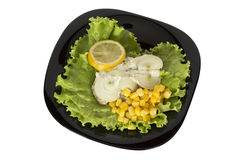 Fish dish on a black plate Stock Images