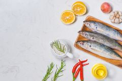 Fish dish cooking with various ingredients. Fresh raw fish decor. Ated with lemon slices and herbs on wooden table Stock Image