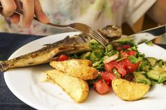 Fish dish - roasted trout with vegetables Stock Image