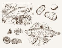 Fish dish. Set of vector sketches Royalty Free Stock Image