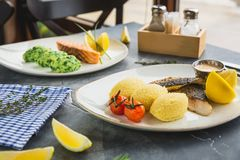 Fish dishes with millet porridge, tomato, lemon slice and shrimp sauce on dark table. Fish dishes with millet porridge, tomato, lemon slice and shrimp sauce on Royalty Free Stock Image