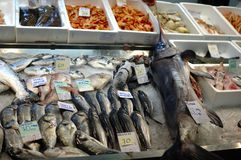 Fish display Stock Photos
