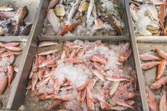 Fish displayed for sale on Greek island Kalymnos Stock Photo