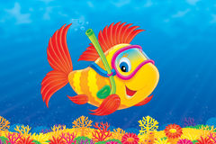 Fish diver. High resolution image for your design and wallpaper Royalty Free Stock Photos