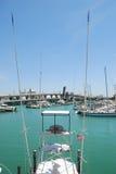 fish dokująca Miami łódź Zdjęcia Royalty Free