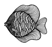 Fish doodle. Hand Drawn patterned vector. Sea art collection. Black and white Fish doodle. Hand Drawn patterned vector. Sea art collection Royalty Free Stock Image