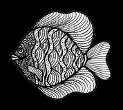 Fish doodle. Hand Drawn patterned vector. Sea art collection. Black and white Fish doodle. Hand Drawn patterned vector. Sea art collection Stock Photography