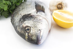 Fish dorade with  parsley, garlic and lemon Stock Images
