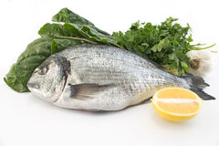 Fish dorade with swiss chard, parsley, garlic and lemon Royalty Free Stock Images
