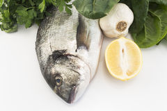Fish dorade with swiss chard, parsley, garlic and lemon Royalty Free Stock Image