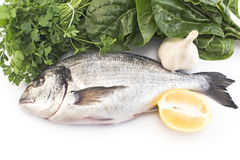 Fish dorade with swiss chard, parsley, garlic and lemon Royalty Free Stock Photography