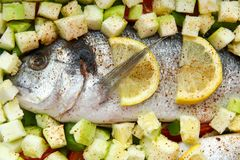 Fish dorado with vegetables and lemon. Uncooked fish dorado with vegetables and lemon Royalty Free Stock Image