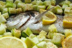 Fish dorado with vegetables and lemon. Uncooked fish dorado with vegetables and lemon Stock Image