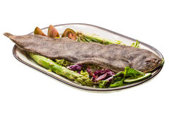 Fish Dover sole Royalty Free Stock Photos