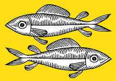 Fish drawing. Two black and white fish drawing on yellow background Stock Images