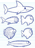 Fish Drawings. Cartoon illustrations of various types of fish Stock Images