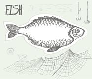 Fish, drawn in pencil. Vector illustration. Fish, net and hooks on a neutral background Stock Photography