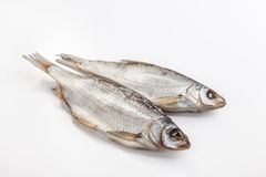 Fish dried Stock Images