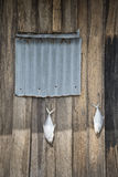 Fish drying outside fisherman house Royalty Free Stock Images