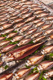 Fish drying in the sun. Traditional food Royalty Free Stock Photo