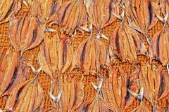 Fish Drying In The Sun Stock Photo