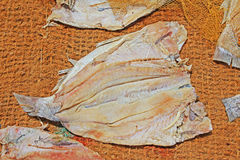 Fish Drying In The Sun Royalty Free Stock Image