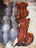 Fish drying up. Fish drying on a market in Thailand Royalty Free Stock Photos