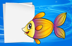 A fish beside an empty signboard. Illustration of a fish beside an empty signboard Royalty Free Stock Image