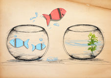 Fish Escaping to New Fishbowl.  Stock Photos